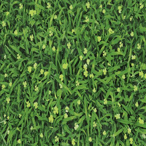 Gạch lát sân vườn Mikado kích thước 40X40 MT-VC4505
