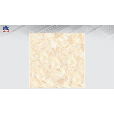 Gạch lát nền ceramic chuyên dụng cho nhà tắm DG 3019