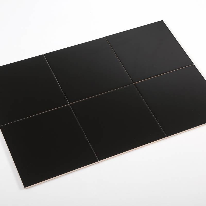 Gạch thẻ đen mờ phẳng 200*200mm BC-M2207Y